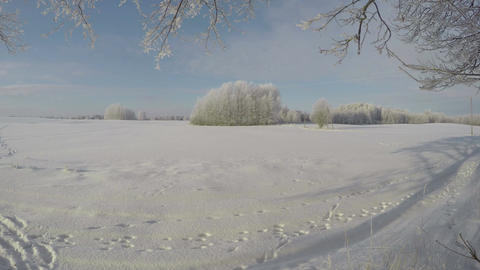beautiful winter landscape with fields and trees, time lapse 4K Footage