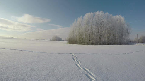 Feet tracks on snow on sunny frosty day, time lapse 4K Footage