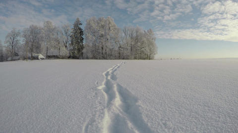 Feet tracks on midwinter snow on sunny day, time lapse 4K Footage