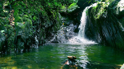Spellbinding pond with waterfall in middle of jungle. Mysterious pool in tropics Footage
