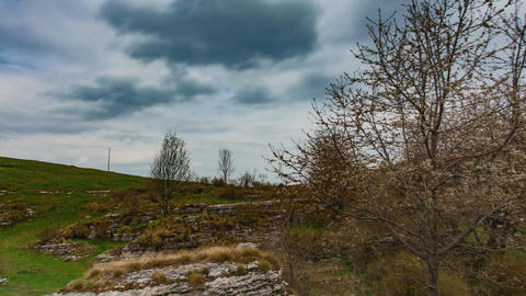 Spring Landscape with Clouds and Trees Footage