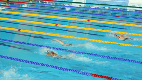 Tense Athletes Women Swimming Competition in Modern Pool Footage