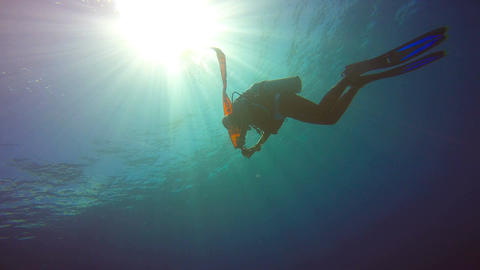Surfacing after a scuba dive Footage