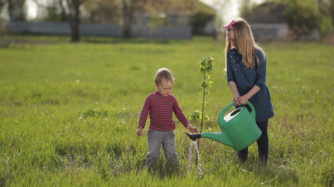 Cute baby boy planting tree with sister in garden Footage