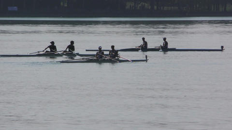 Rowing Championship Coxless Pairs Man Footage