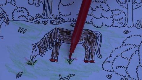 Drawing in coloring book, 4K Live Action