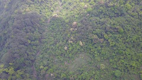 DJI MAVIC 4K Taiwan Taichung Aerial Drone Video KuKuan White hair mountain 20170 Footage