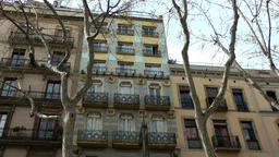 Spain Barcelona 022 facades and bare branches in march in La Rambla Footage