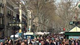 Spain Barcelona 030 crowd of people under bare plane trees of La Rambla Footage