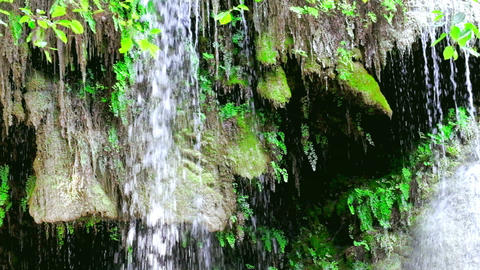 Streaming waterfall and tropical plants at deep rain forest. Thailand Footage