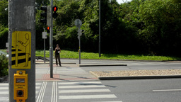 pedestrians waiting at traffic lights - busy urban street with cars: nature (tre Footage