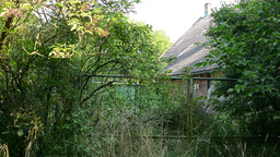 old cottage building - overgrown with nature (bushes, trees and grass) - gate Footage