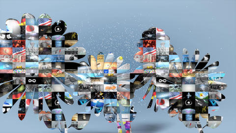 Collage of video clips, Stock Animation