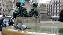 Spain Barcelona 041 water well with doves on Plaça de Catalunya Footage