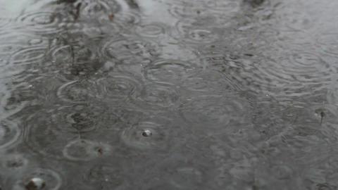 Rain Falls In City 3 Footage