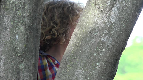 Boy Hiding Behind Tree Live Action