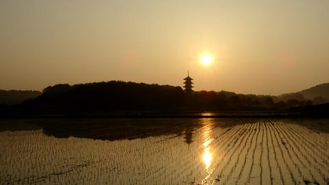Timelapse-Five Storeyed Pagoda in the morning sun-2 Live Action