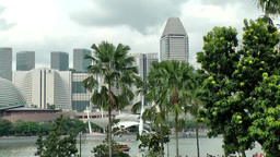 Singapore 053 bayside cityscape and exotic plants Footage