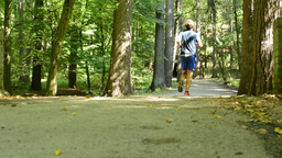 man sports - running - forest: park (trees) - pathway - suns rays - slider Footage