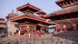 Pigeons on Durbar square,Kathmandu,Nepal Footage