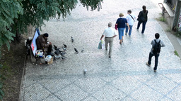 homeless man feeds pigeons on the street - people walk around him - pavement and Footage