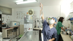 MVI 0593 Placing infusion in vet clinic Footage
