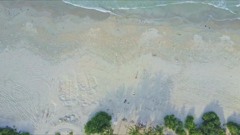 Aerial View Wide Slow Ocean Wave Rolls on Beach by Palms Footage