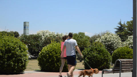 Young Sporty Couple Walks Dog In Park Live Action