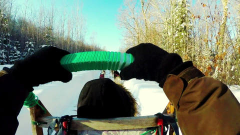 Woman on a sleigh ride with Siberian husky Live Action
