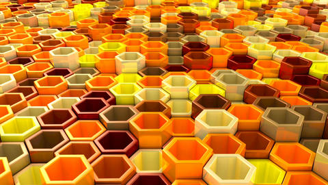network of hexagons Animation