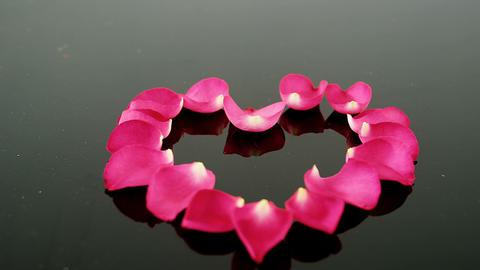Rose petals forming heart shape against black background Footage