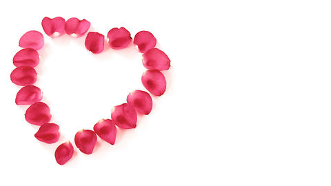 Rose petals forming heart shape against white background Footage
