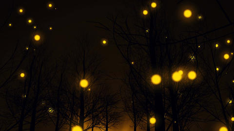 Magic Yellow lights fly up among dark forest trees Animation