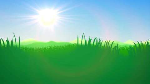 Green Grass field against a blue day sky Animation