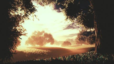 Amazing Natural Wonderland in the Sunset Sunrise 4 Animation