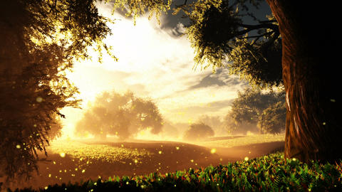 Amazing Natural Wonderland in the Sunset Sunrise with Fireflies 1 Animation