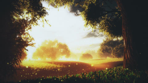 Amazing Natural Wonderland in the Sunset Sunrise with Fireflies 3 Animation