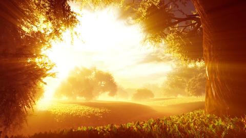 Amazing Natural Wonderland in the Sunset Sunrise with Lightrays 1 Animation