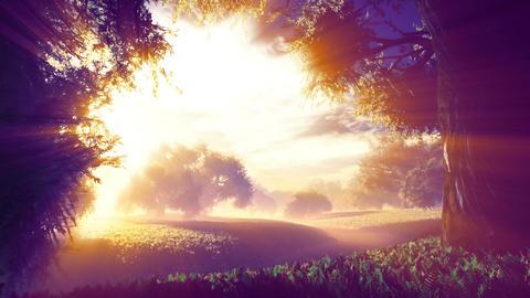 Amazing Natural Wonderland in the Sunset Sunrise with Lightrays 2 Animation