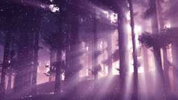 Mysterious Deep Pine Forest with Lightrays and Fireflies v 2 2 Animation