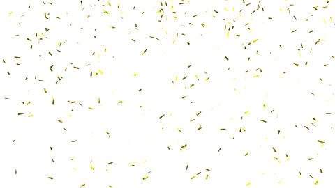 Confetti on White, alpha matte Animation