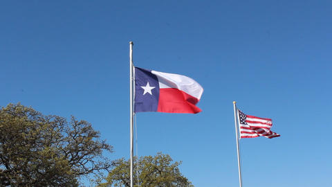 Texas and American flag waving Footage