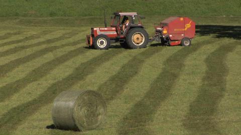 Harvest stock footage