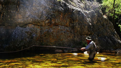 Fisherman fly fishing in river, Live Action