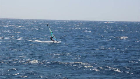 Windsurfer sailing fast in the Red Sea ビデオ
