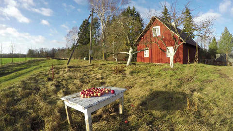 Landscape with red wooden house with apple trees and apples on the table, time l Footage