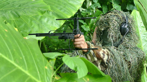 radio telemetry technology for wildlife research and management Footage