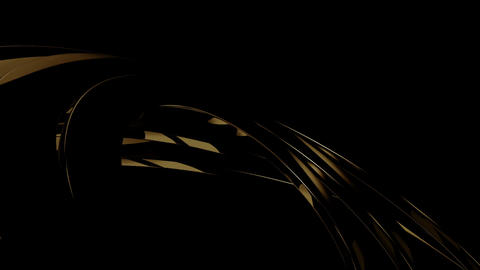 Black Golden Circular Animation