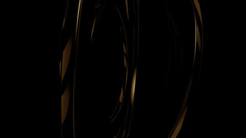 Black Golden Circular 2 Animation