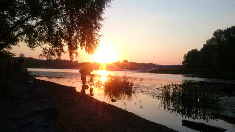 Inspired photographer standing in river with camera at sunset, beautiful nature Footage